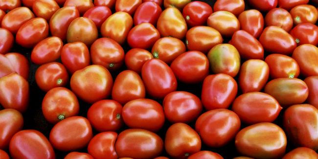 tomates_fondo4