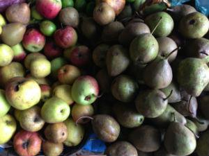 La manzana panochera y la pera lechera son ingredientes clave para la preparación del relleno. // Foto: Animal Gourmet.