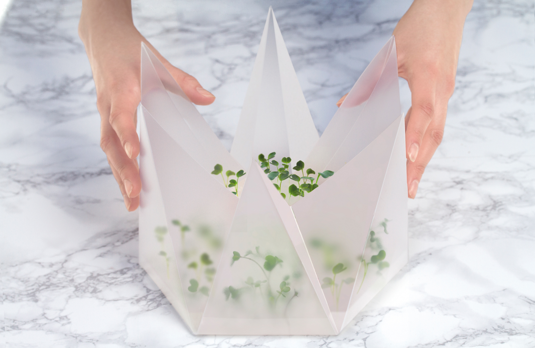 El kit de cultivo de germinado combina funcionalidad, estética y nutrición. // Foto: Cortesía www.tomorrowmachine.se