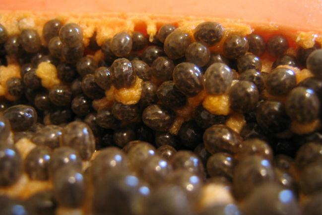 Las semillas de la papaya se utilizan para elaborar