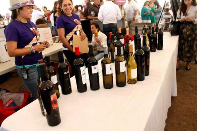 Las Fiestas de la Vendimia son la mejor oportunidad para conocer las etiquetas y vinícolas de Baja California. // Foto: Provino AC. (Facebook)