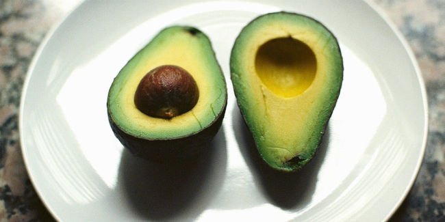 Aguacate_NeilConway