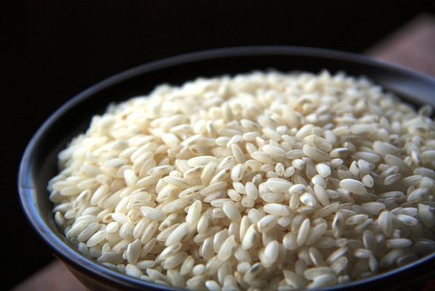 El Arroz: tipos de granos, recetas y más de este increíble alimento.