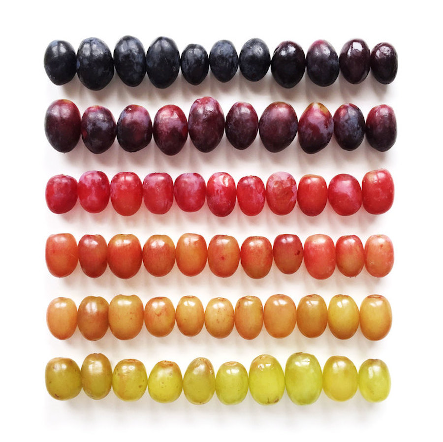 Brittany-Wright-Food-Gradients7
