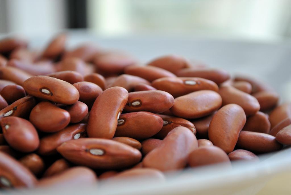 10 alimentos para acelerar la digestión