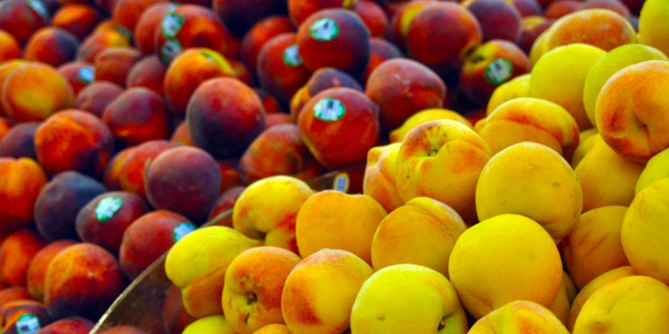 guardar frutas verduras