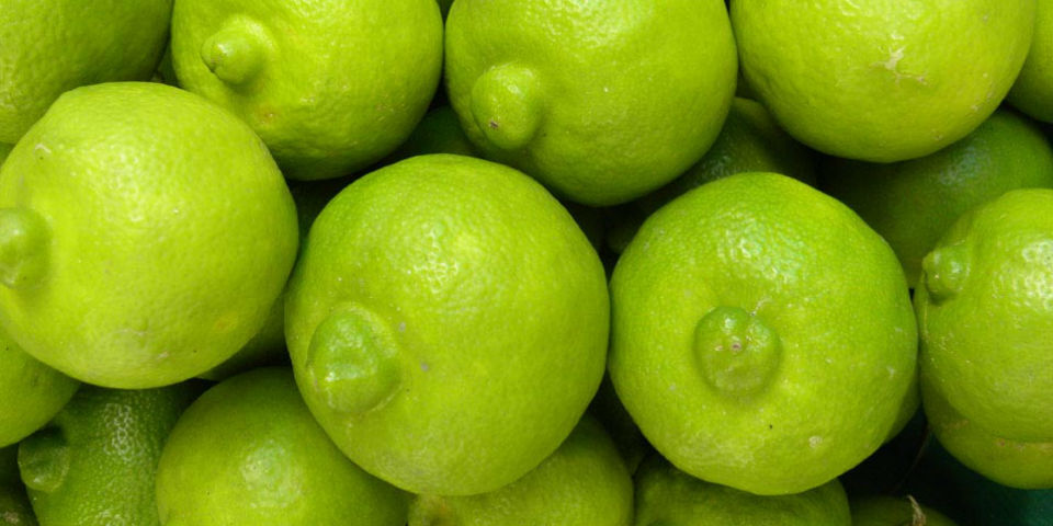 Foto de fruta lima 49