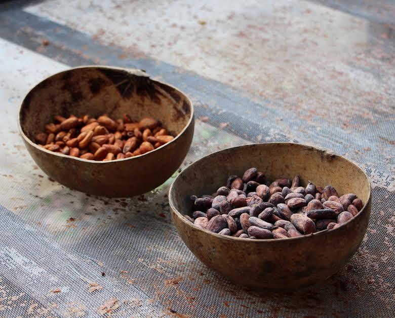 cacao creatividad memoria