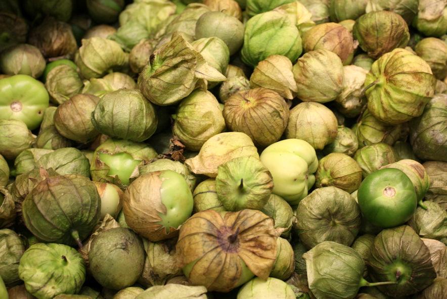 Tomate verde, esencial en la comida mexicana. //Foto: Wikimedia Commons.