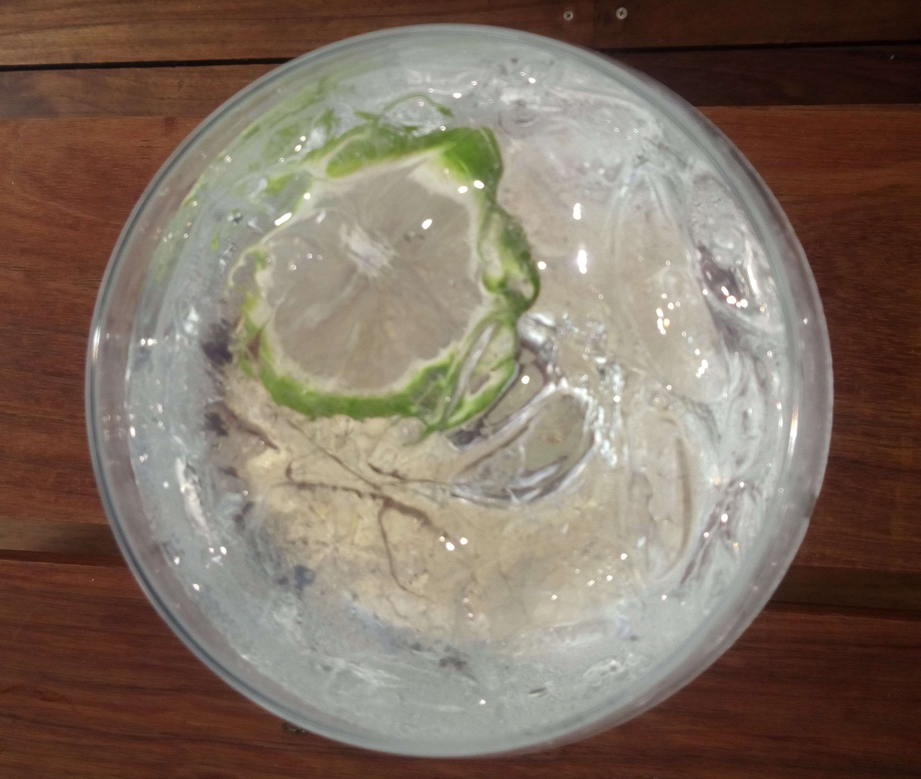 Gin Tonic. //Foto: Roxana Zepeda.