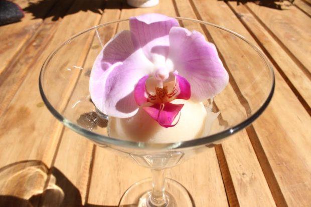 Cremoso de lichis y tequila crystal, una combinación fresca y una orquídea como firma personal, ya que es conocida como la chef de las flores.//Foto: Fernanda Muñoz.