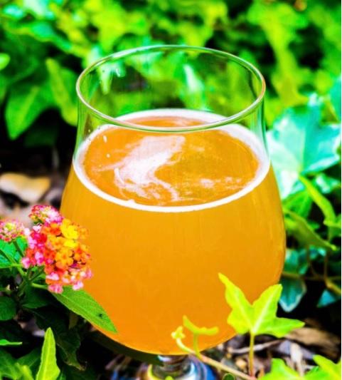 Cerveza de limón y vainilla