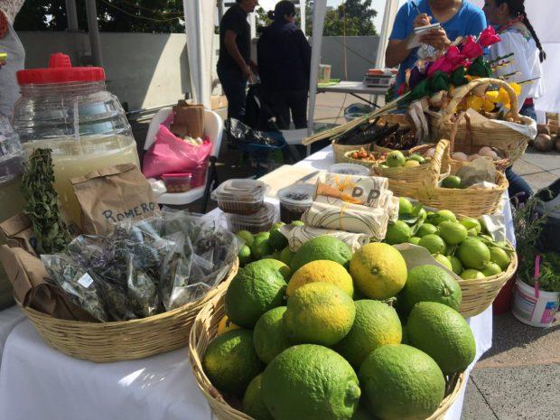 Mercado de productos orgánicos en Tlaxcala