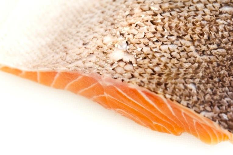 como cocinar salmon