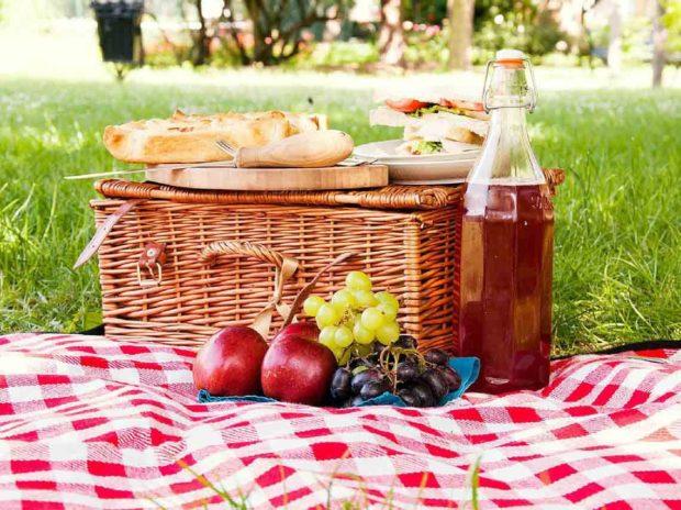 Disfruta de un picnic con tus amigos y tu familia