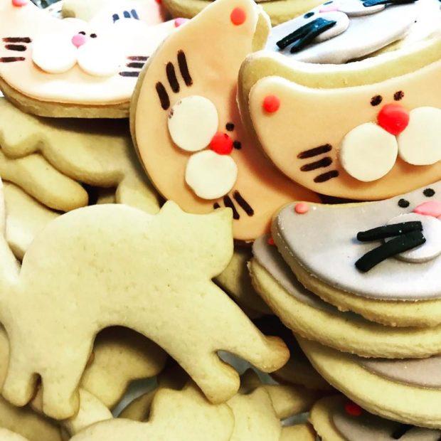Las galletas son de distintos sabores y puedes comprarlas desde la entrada. Foto cortesía de La Gatería.