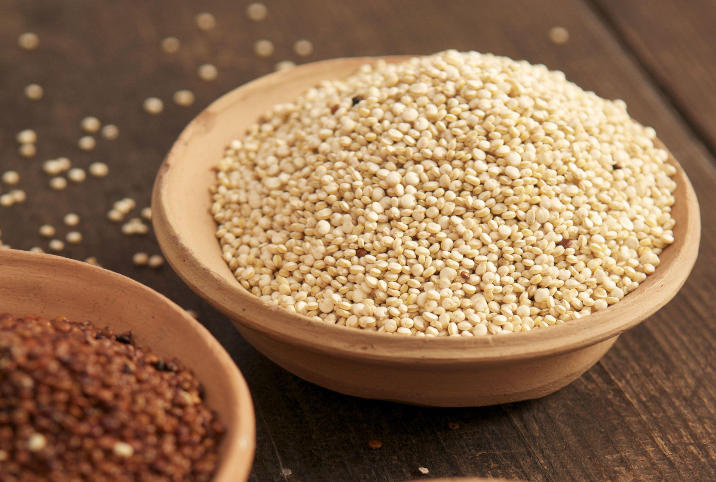 Con la proteína de estos alimentos de origen vegetal no extrañarás la carne