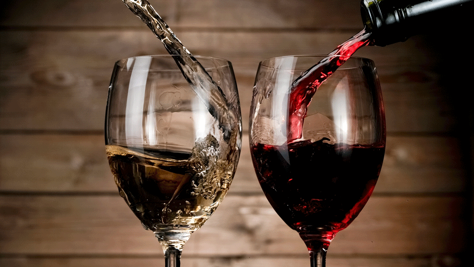 catas de vino gratis