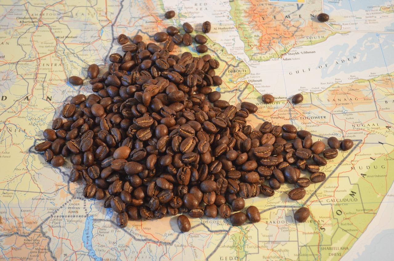 el café en el mundo