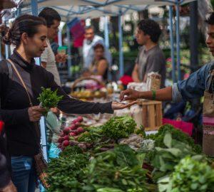 olutamente todo lo que entra a nuestra boca afecta en nuestra salud y por eso queremos recomendarte 10 alimentos que quieres incluir en tus menús para estar saludable de verdad.