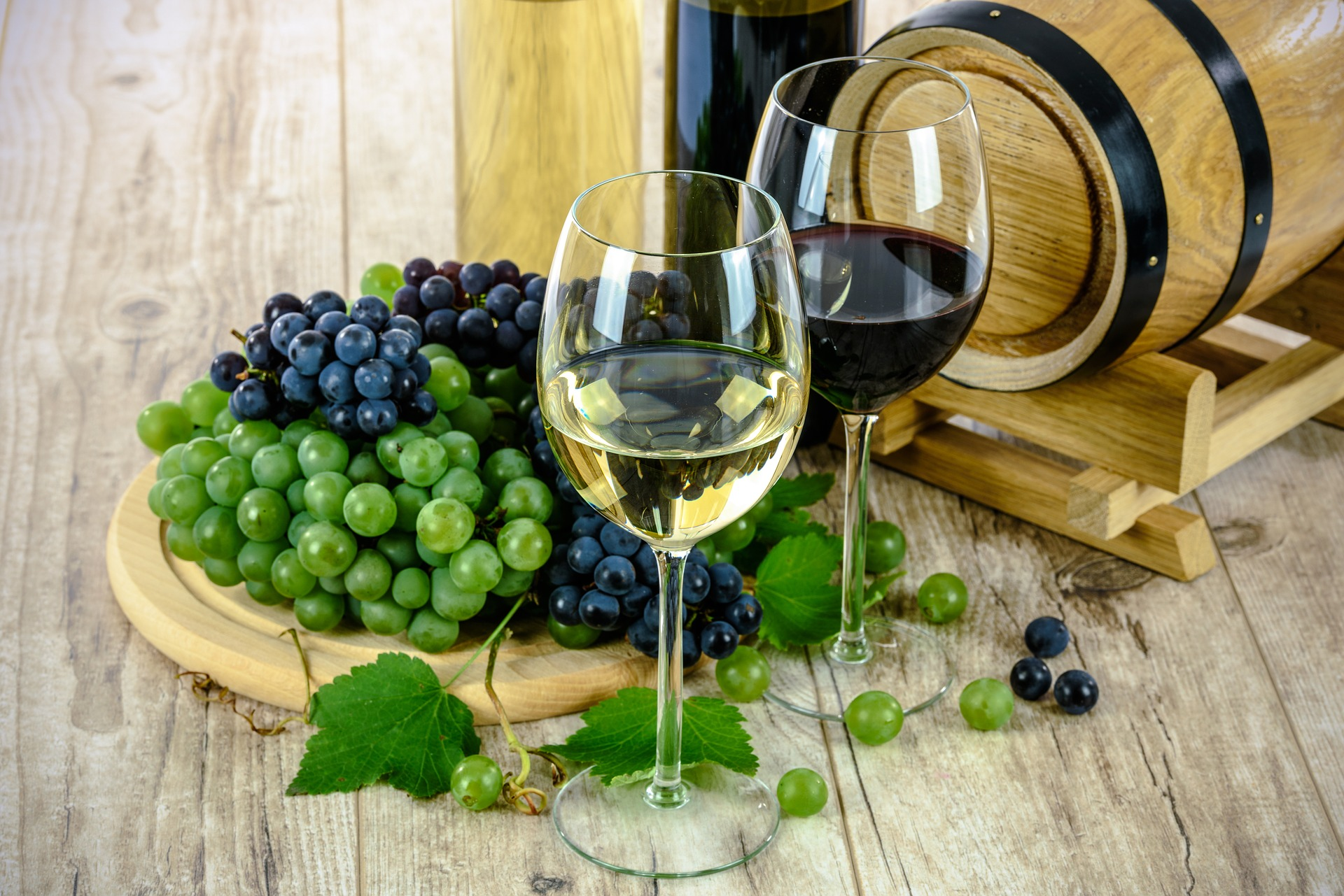 vino de Sonora