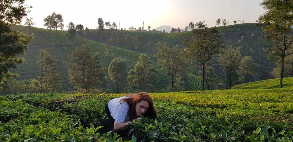 sommelier de té