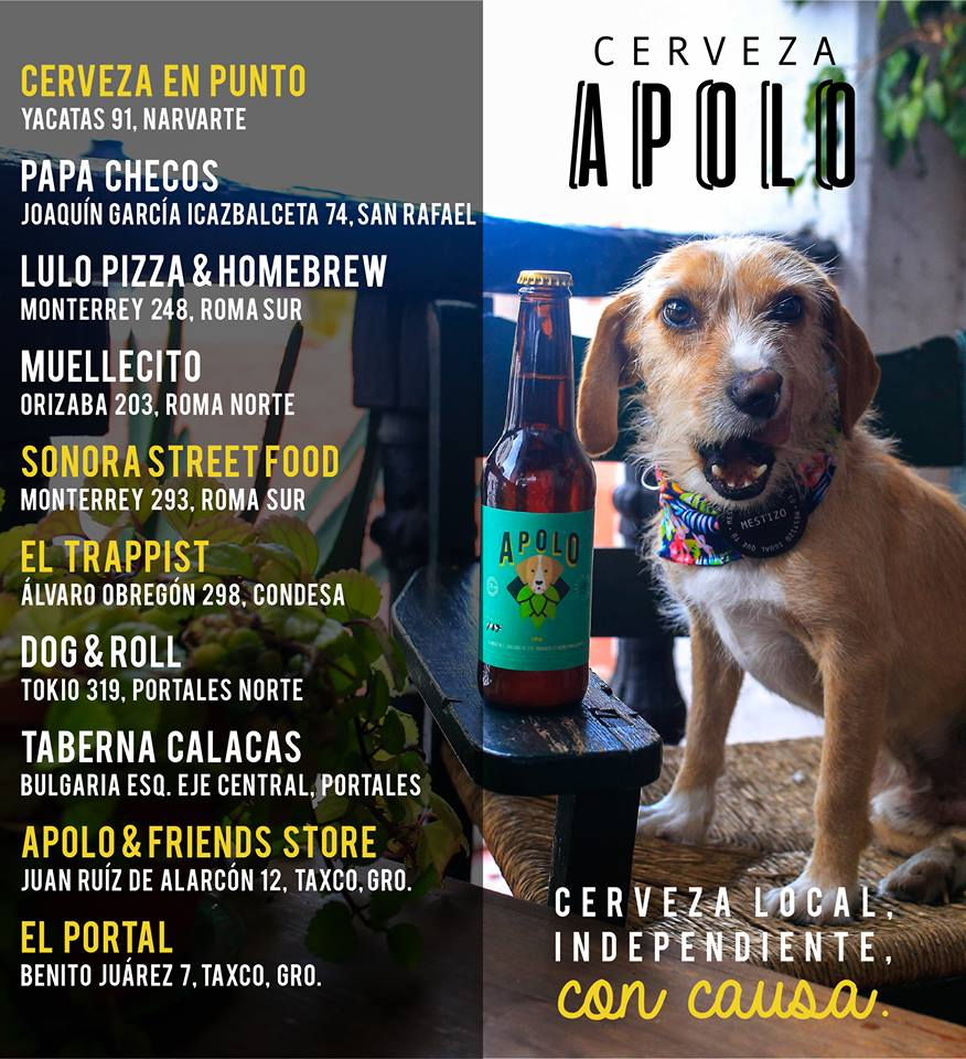 Lugares en donde venden Cerveza Apolo