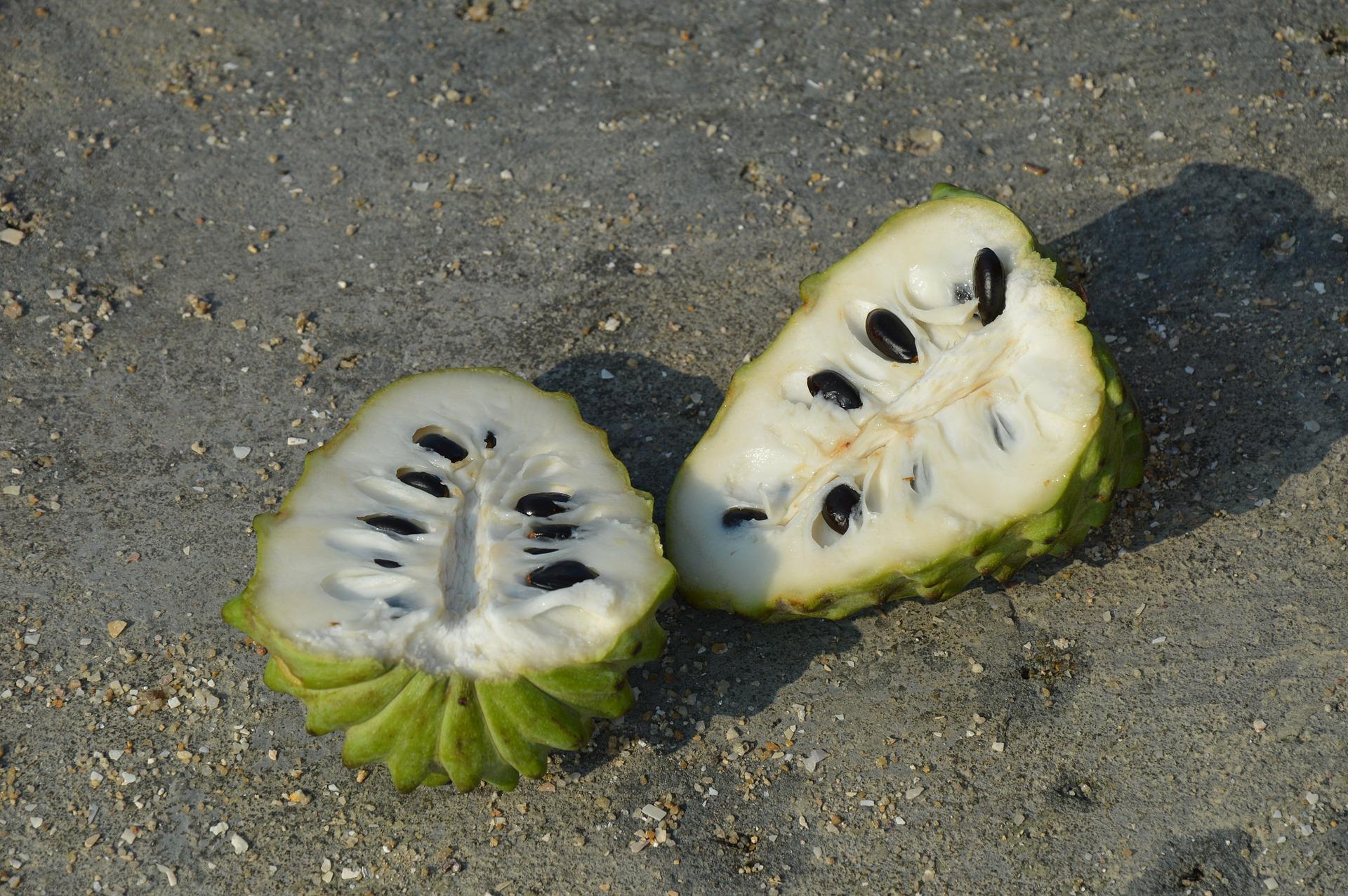Frutas mexicanas, chirimoya