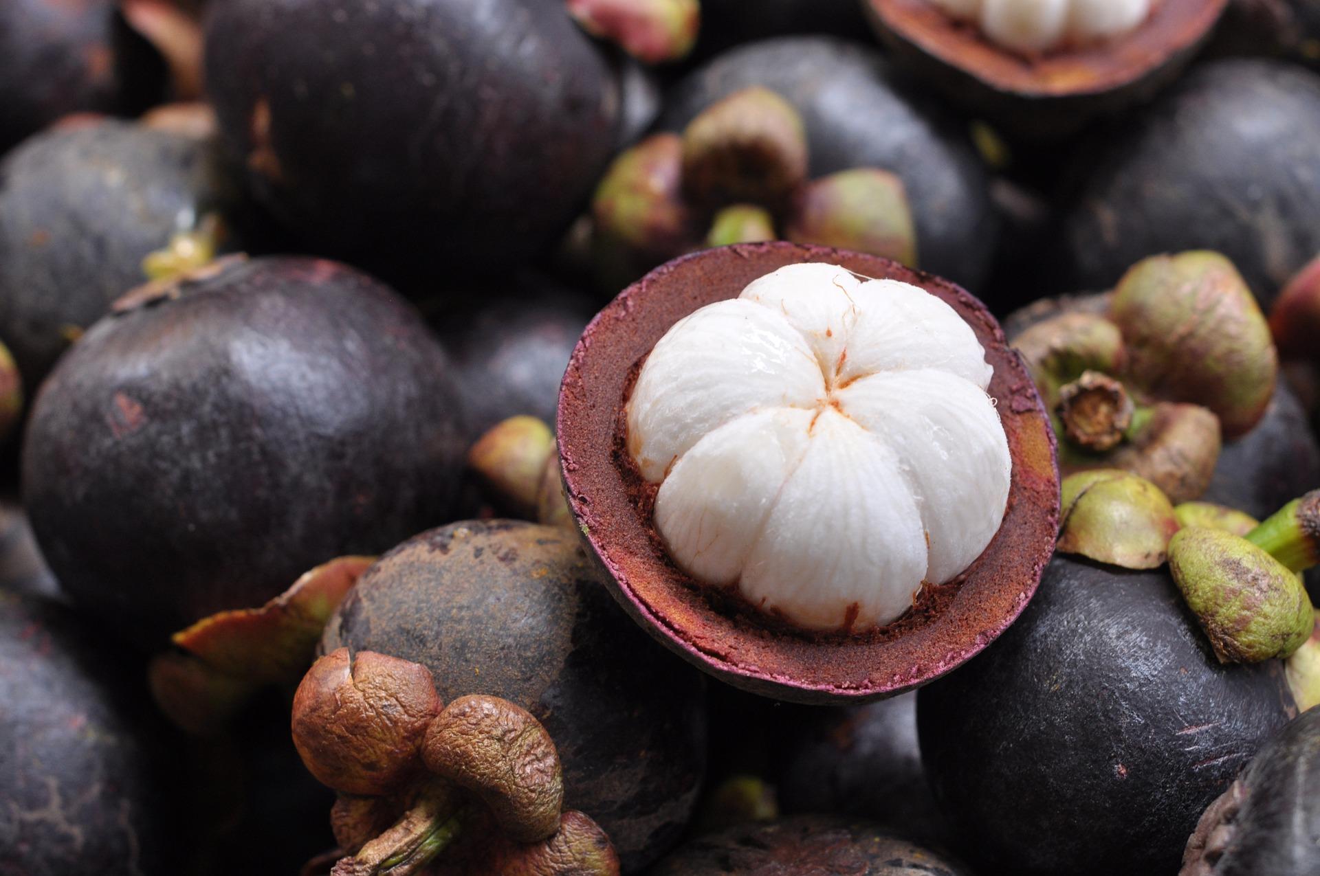 El mangostán se encuentra entre las frutas exóticas que podemos encontrar en México.