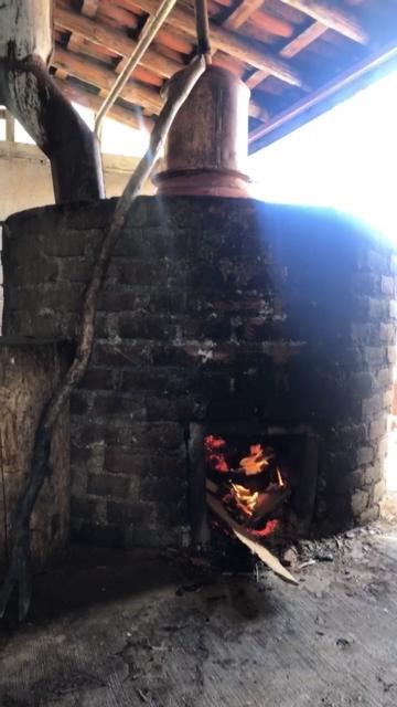 Mezcal destilación destilado