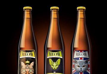 Cerveza meow día del gato