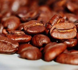café de nayarit café nayarita