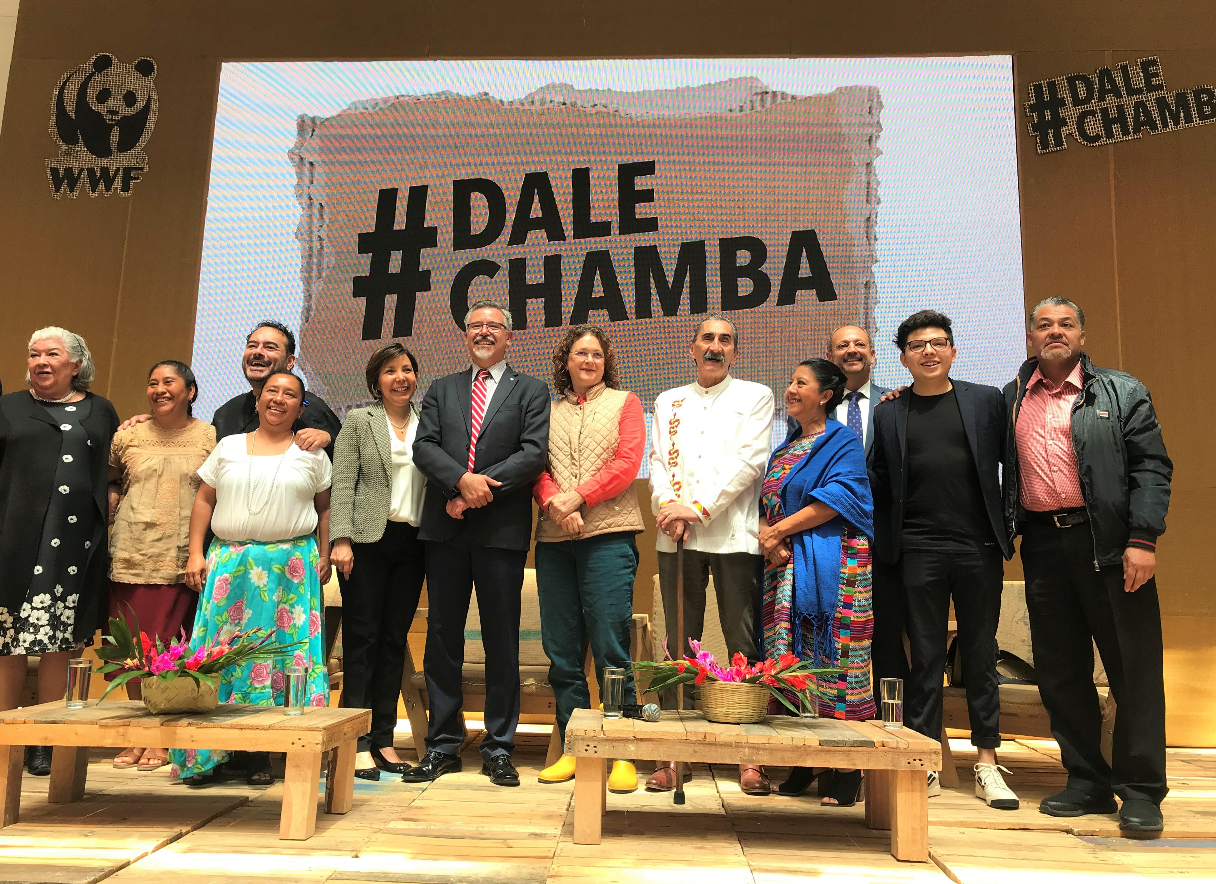 #DaleChamba Dale Chamba