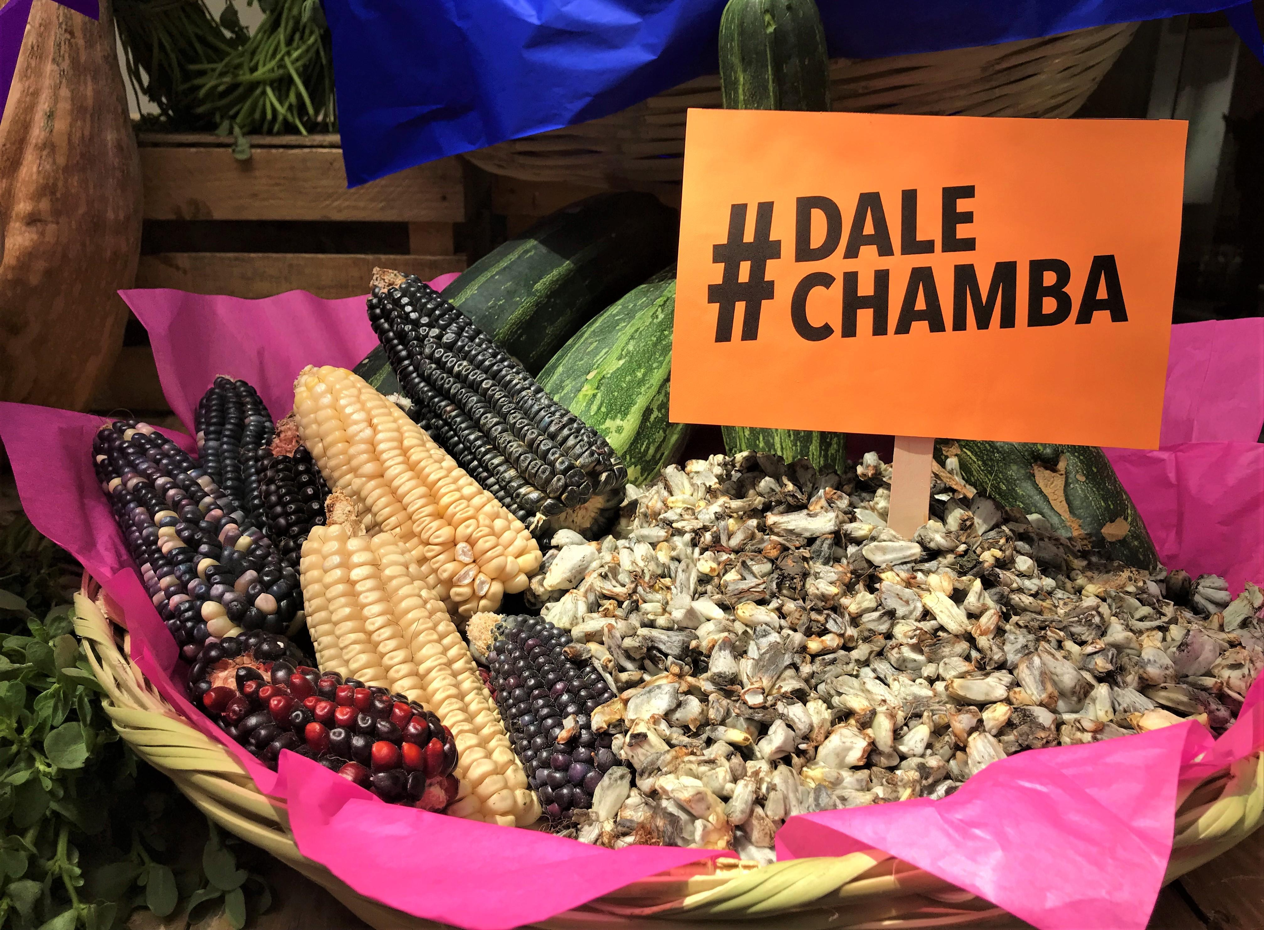 DaleChamba