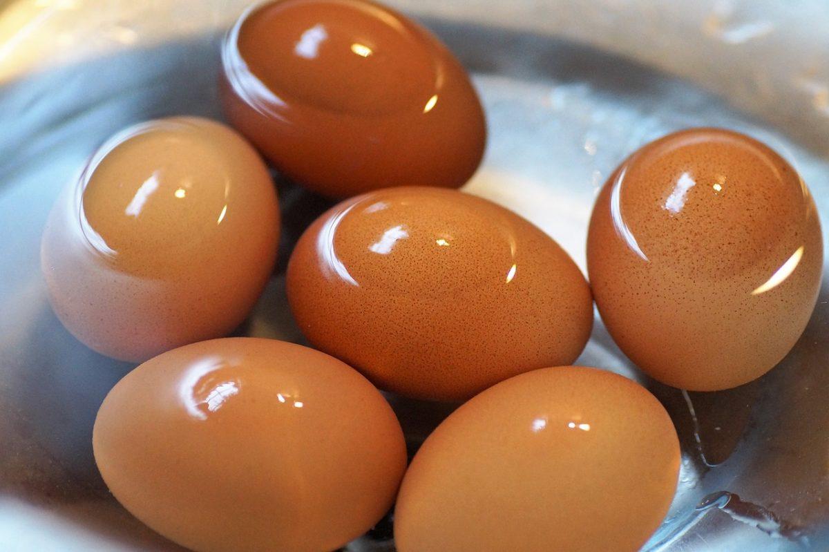 huevo cocido