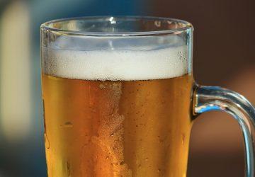 Cerveza Ocotillo