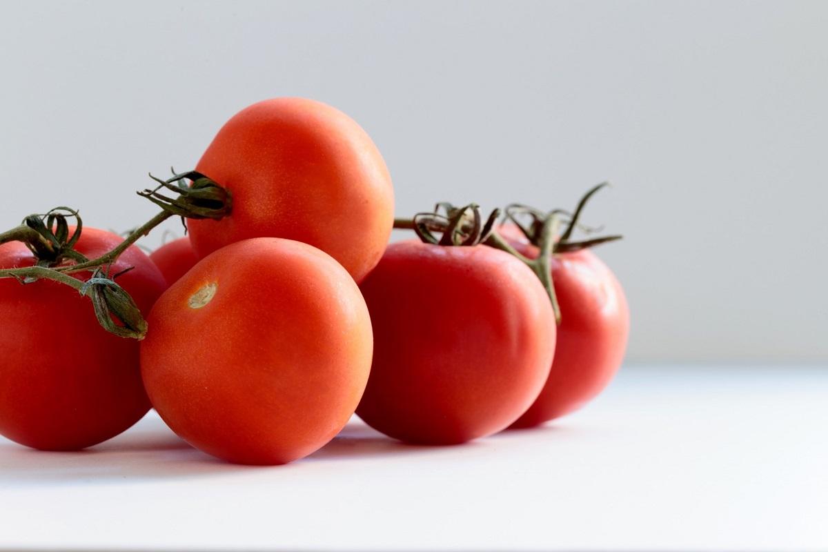 jitomate antioxidantes