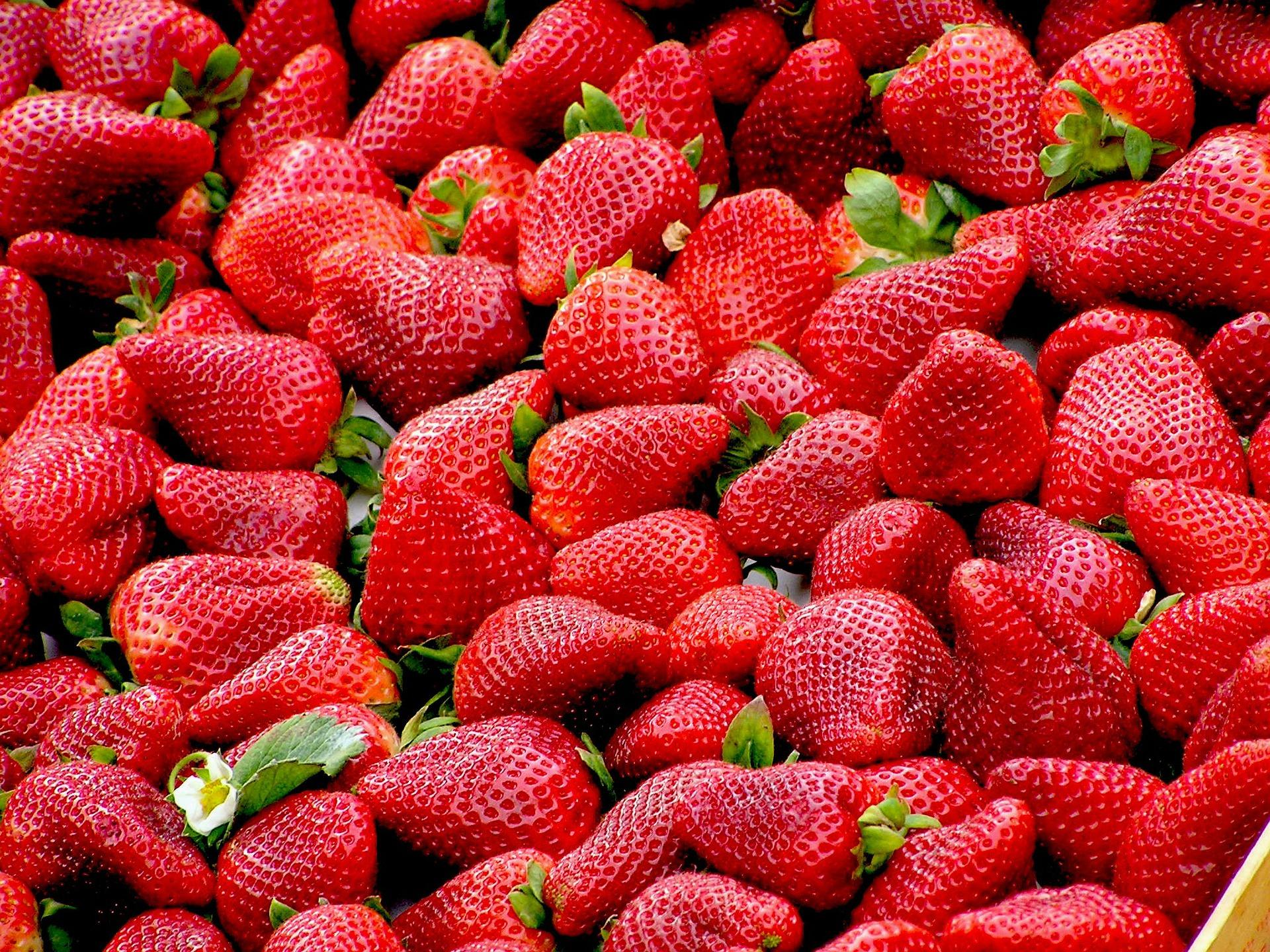 frutas con poca azúcar, fresas.