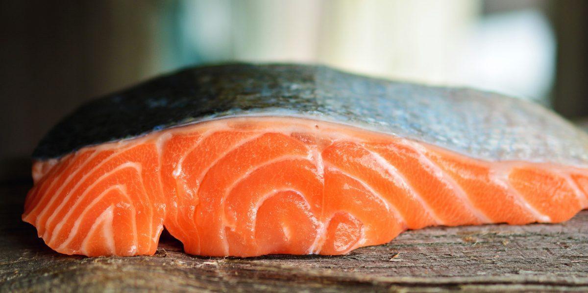 atún y salmón