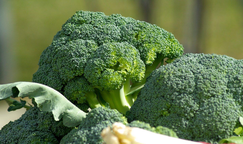 brocoli recetas beneficios