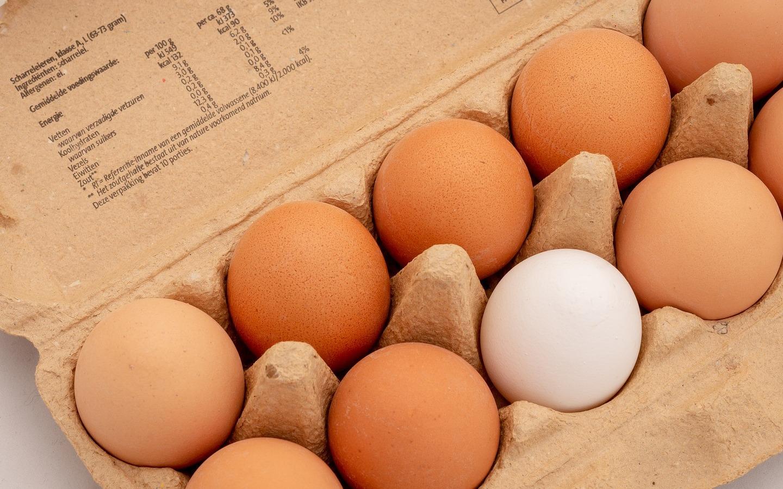 conservar y elegir huevo fresco