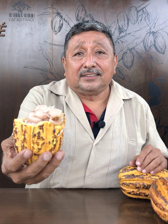 cacao maya
